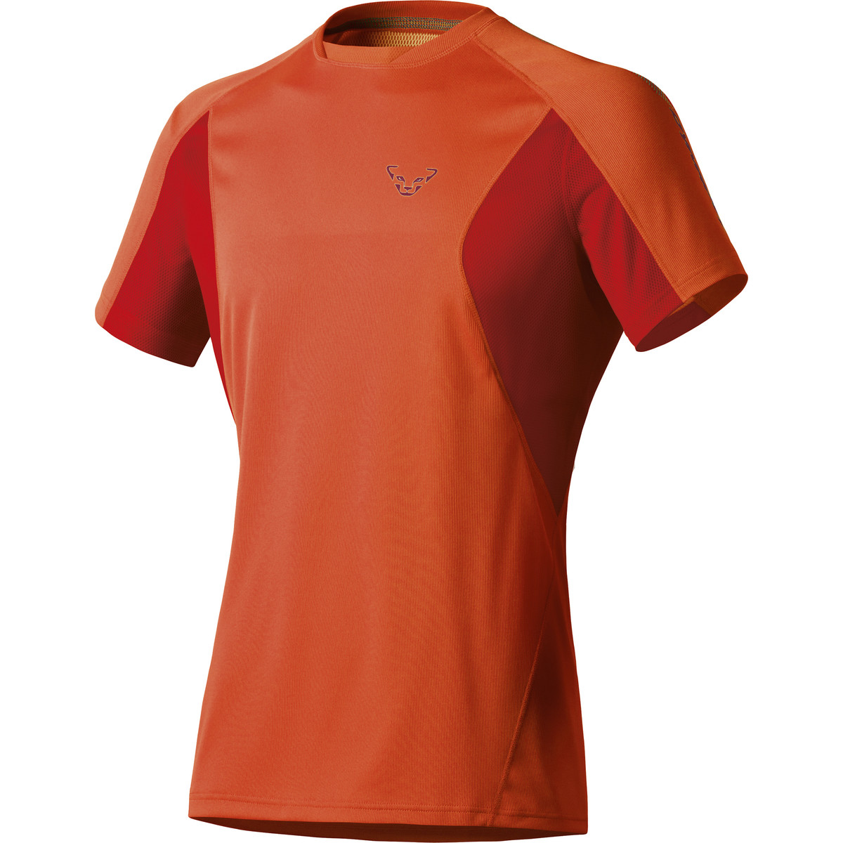 photo: Dynafit Trail T-Shirt short sleeve performance top