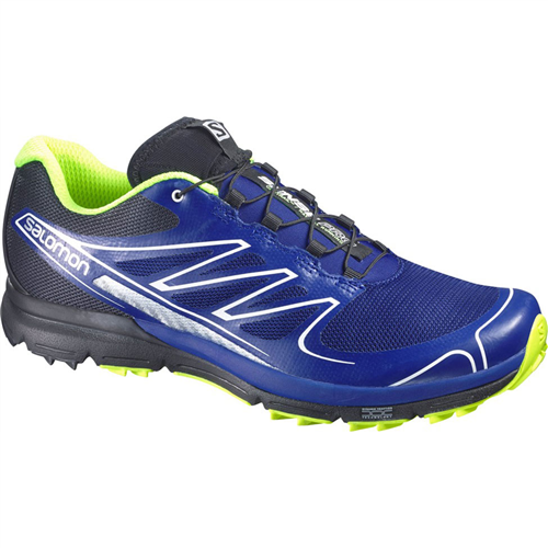 photo: Salomon Sense Pro trail running shoe
