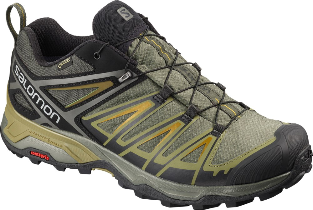 photo: Salomon X Ultra 3 GTX trail shoe