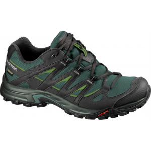 photo: Salomon Eskape GTX trail shoe