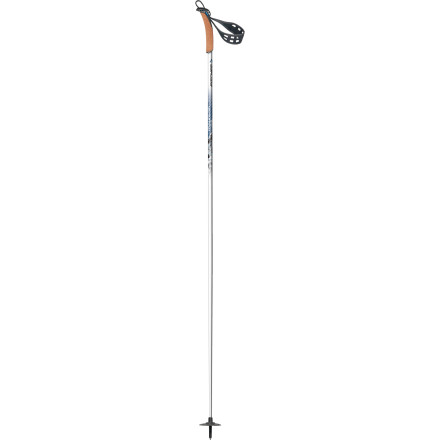 photo: Fischer BCX Mountain nordic touring pole