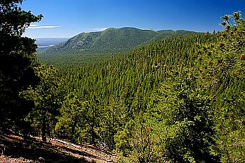 Mt-Elden-from-the-Pipeline-Road.jpg