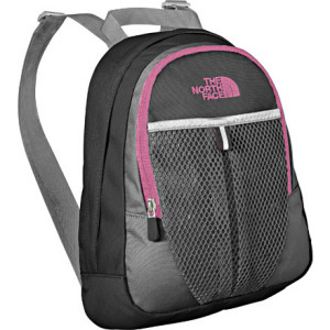 photo: The North Face Paige daypack (under 2,000 cu in)