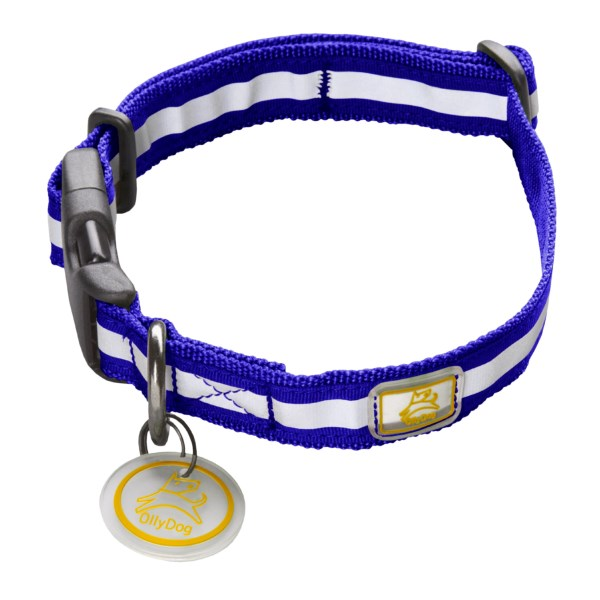 photo: OllyDog Nightlife Collar dog collar