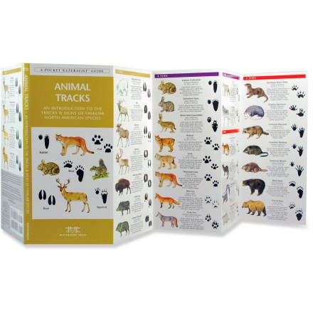 Waterford Press Animal Tracks - A Pocket Guide to the Tracks and Signs of Familiar Species