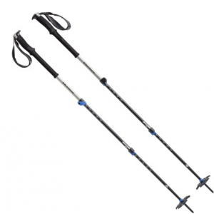 photo: Black Diamond Expedition 3 alpine touring/telemark pole