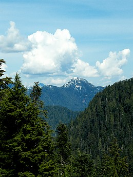 grouse-mountain-summit-view3.jpg