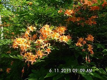 Summer-Trip-2-057.jpg