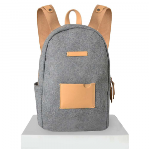 photo of a Sherpani backpack