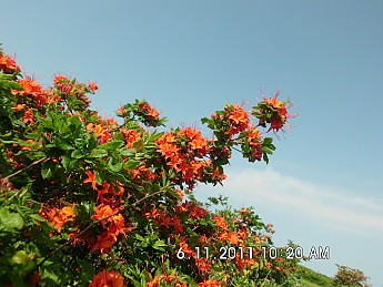 Summer-Trip-2-067.jpg