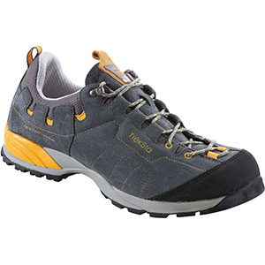 photo of a TrekSta approach shoe