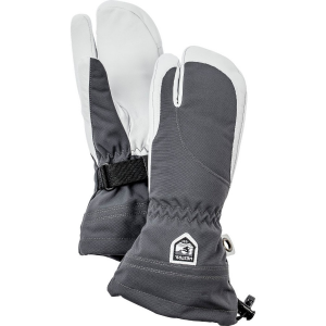 photo of a Hestra glove/mitten
