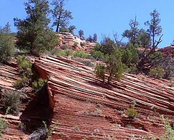 Parunuweap-canyon-5.jpg