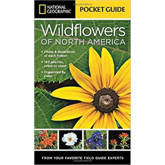 National Geographic Pocket Guide: Wildflowers of North America