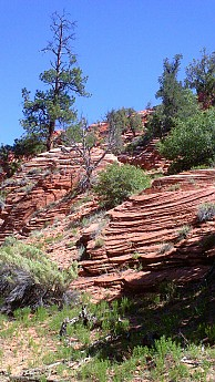 Sandstone-layers-that-were-once-sand-dun