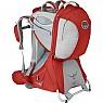 photo: Osprey Poco Premium