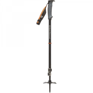 photo: Black Diamond Whippet alpine touring/telemark pole