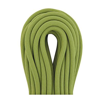 photo: Beal Wall School 10.2 mm dynamic rope