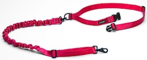 photo: Stunt Puppy  Stunt Runner dog leash