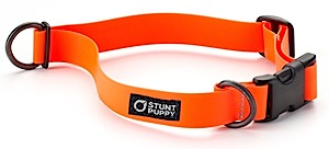 Stunt Puppy  Dry Collar