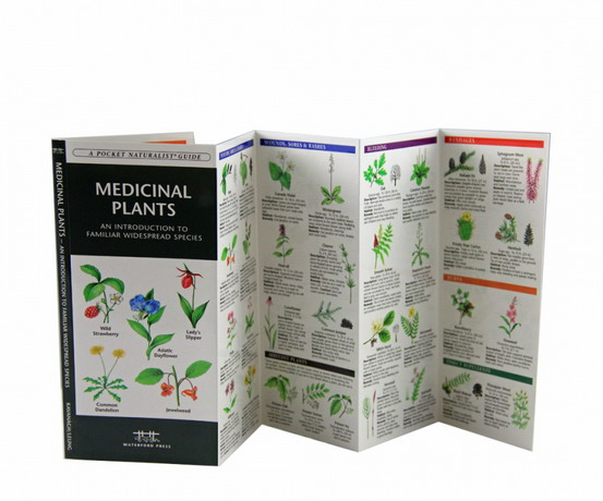 Waterford Press Medicinal Plants