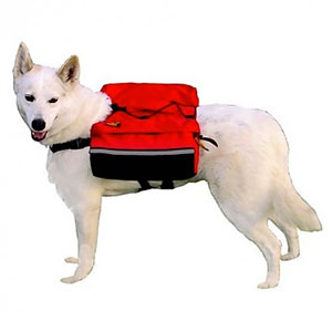 Outward Hound Quick Release Dog BackPack