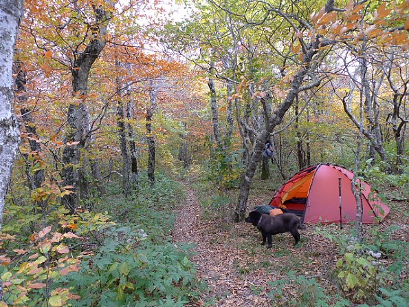 Another tent to consider is the Hilleberg Staika. Itu0027s good for two people cuz it has two vestibules and two doors but itu0027s a little cr&ed. & Western Mountaineering of Tents