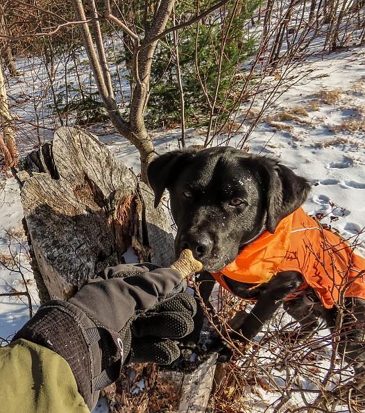 edgar-snowhike-sterling-OR-glove-a.jpg