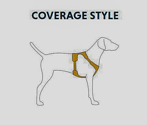coverage-c.jpg