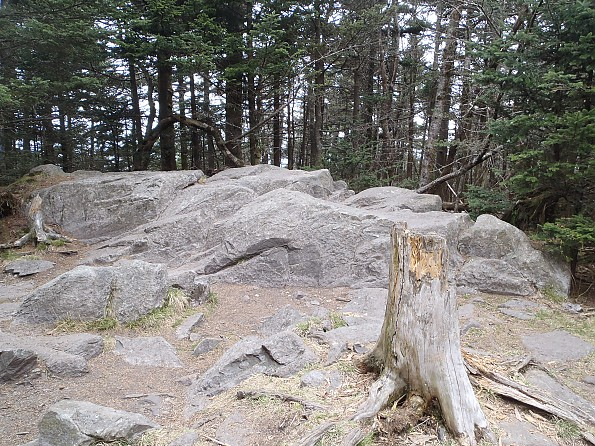 Grayson-Highlands-1-2012-083.jpg