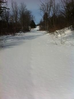 Snowshoeing_2.jpg