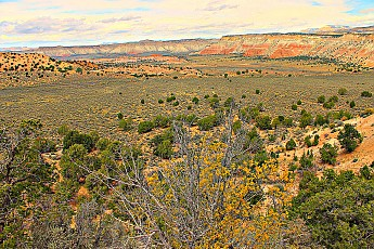 IMG_0944-Fall-comes-to-the-canyons-near-