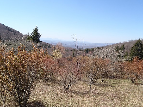 Grayson-Highlands-1-2012-255.jpg