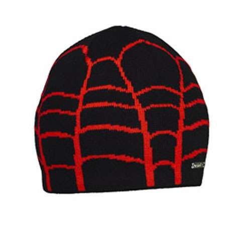 photo: Spyder Classic Web Hat winter hat