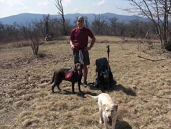 Bob-and-Dogs.jpg