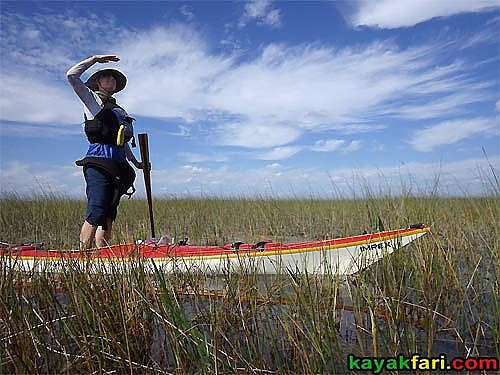 east-everglades-grass-kayakfari-canoe-02