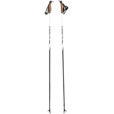 photo: Rossignol X 650 nordic touring pole