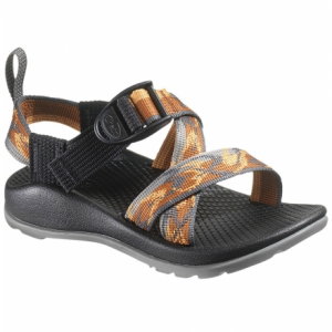 photo: Chaco Z/1 EcoTread sport sandal