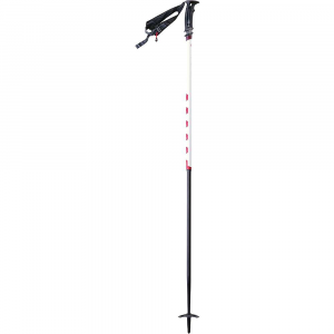 photo: MSR Deploy TR-2 alpine touring/telemark pole