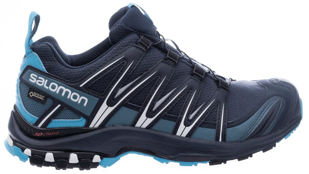 photo: Salomon XA Pro 3D GTX trail running shoe