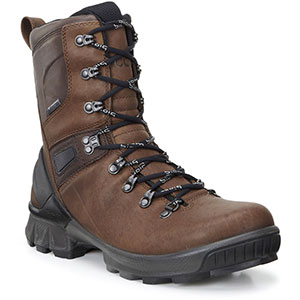 photo: Ecco Biom Hike GTX 1.7 hiking boot