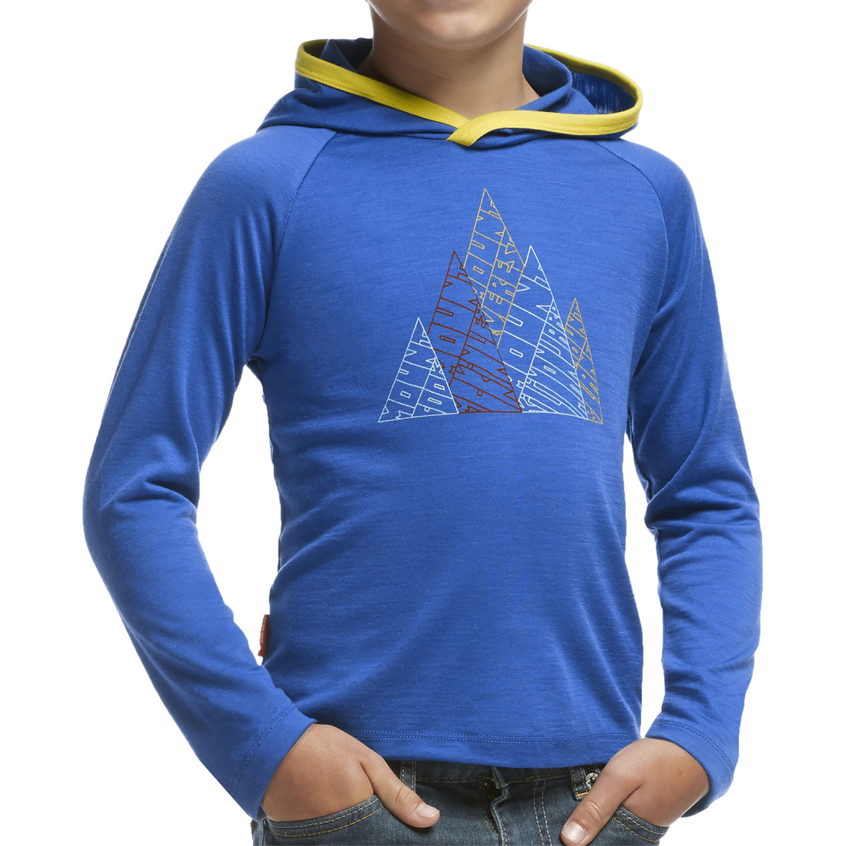 Icebreaker Tech Long Sleeve Hood