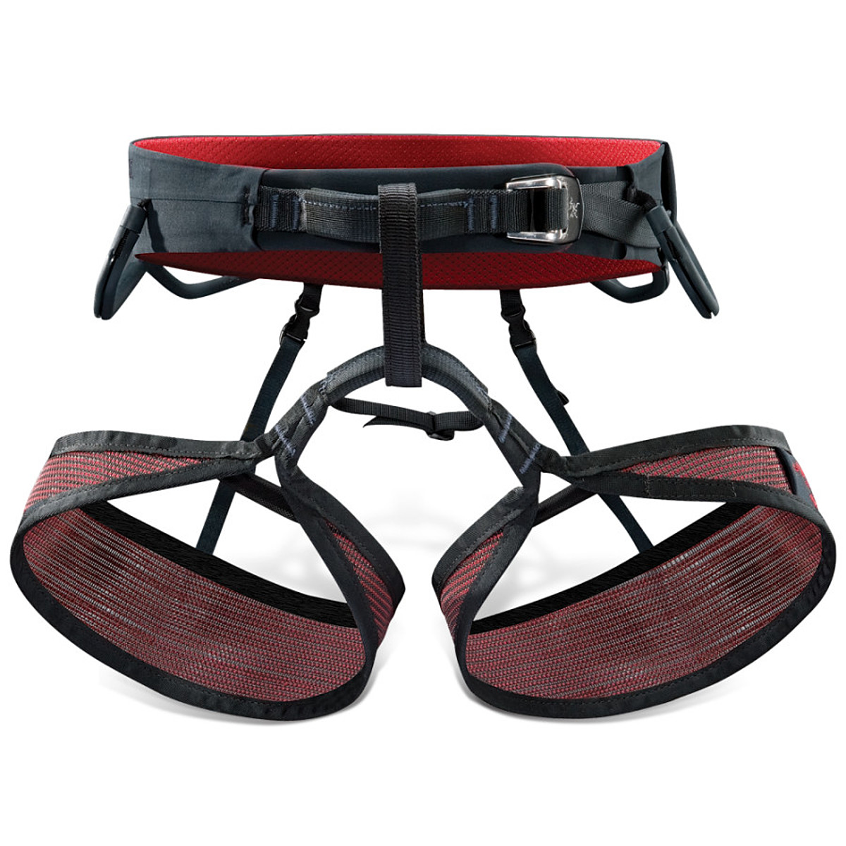 photo: Arc'teryx R-275 LT sit harness