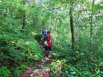 RH-4-miles-of-woods-.jpg