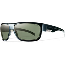 Smith Collective Polarized