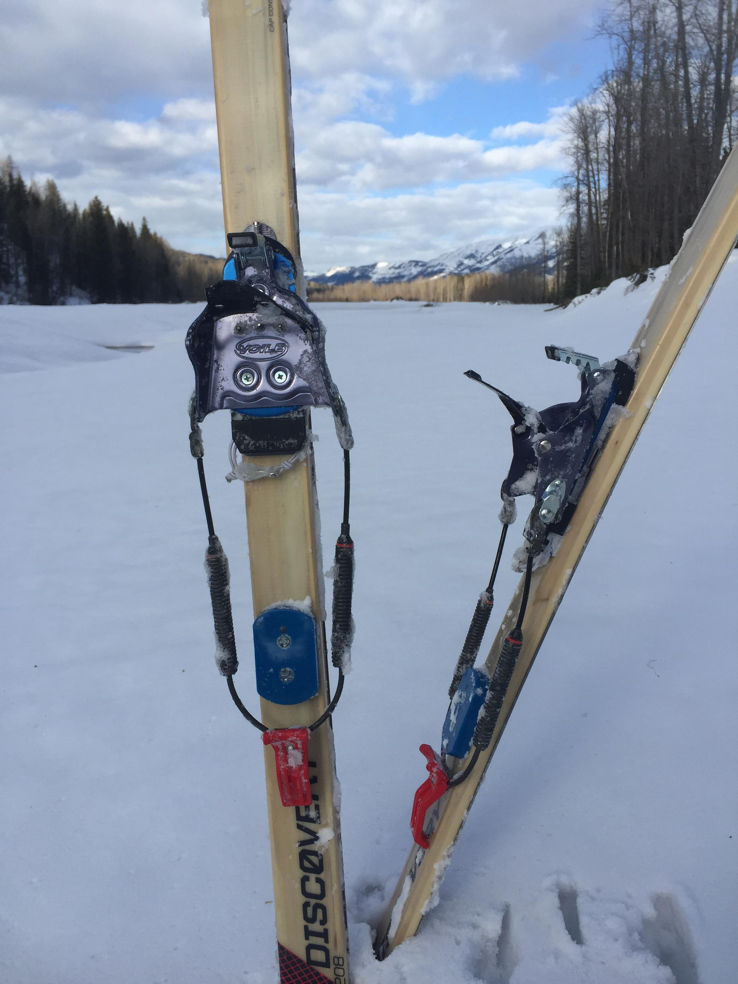 Alpina Discovery 80 XC skis
