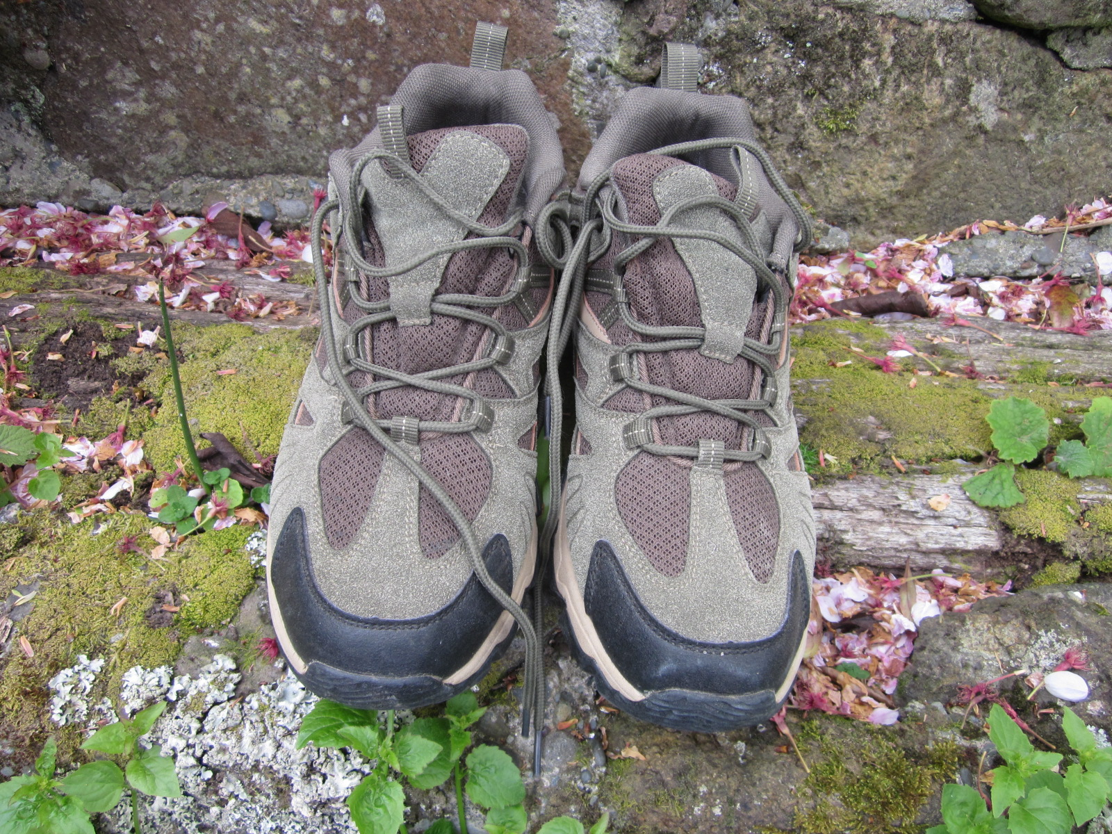 photo:   Hilly Hiker trail shoe