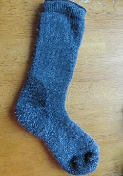 woolx-sock-1c.jpg