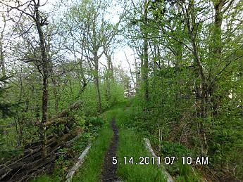Spring-Trip-3-2011-024.jpg