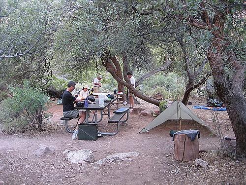 Cottonwood-Camp-site.jpg